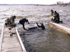 Dive Team Image